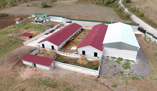 Grup Şirketlerimiz Çiftlik